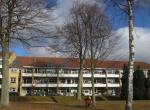 havedagene-april-2013_025