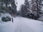 vinter-januar2006